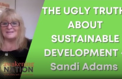 The Ugly Truth about Sustainable Development
